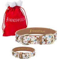 FriendshipCollar Sweet Treats Dog Collar with Friendship Bracelet, Large