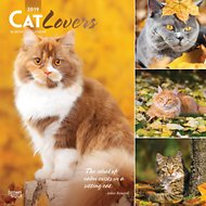 Cat Lovers 2019 Wall Calendar