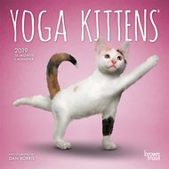 Yoga Kittens 2019 Mini Wall Calendar