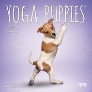 Yoga Puppies 2019 Mini Wall Calendar
