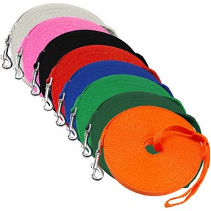 Downtown Pet Supply Training Dog Lead