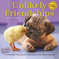Unlikely Friendships 2019 Mini Wall Calendar