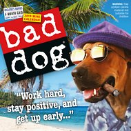 Bad Dog 2019 Mini Wall Calendar