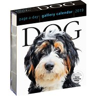 Dog Gallery 2019 Page-A-Day Calendar