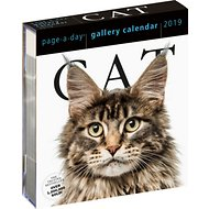Cat Gallery 2019 Page-A-Day Calendar