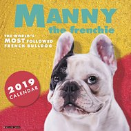 Manny the Frenchie 2019 Wall Calendar