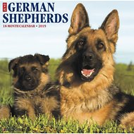 Just German Shepherds 2019 Wall Calendar