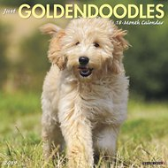 Just Goldendoodles 2019 Wall Calendar