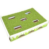 Petstages Grass Patch Hunting Box Cat Scratcher Toy