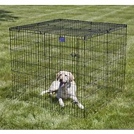 MidWest Exercise Pen Wire Mesh Top