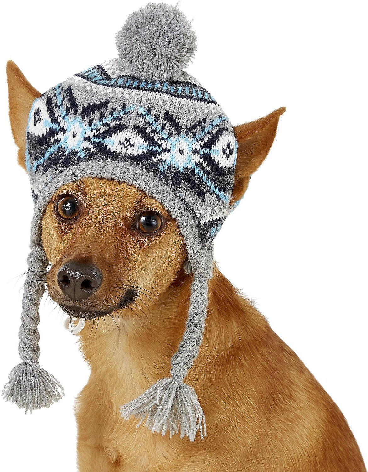 Knit Dog Hat