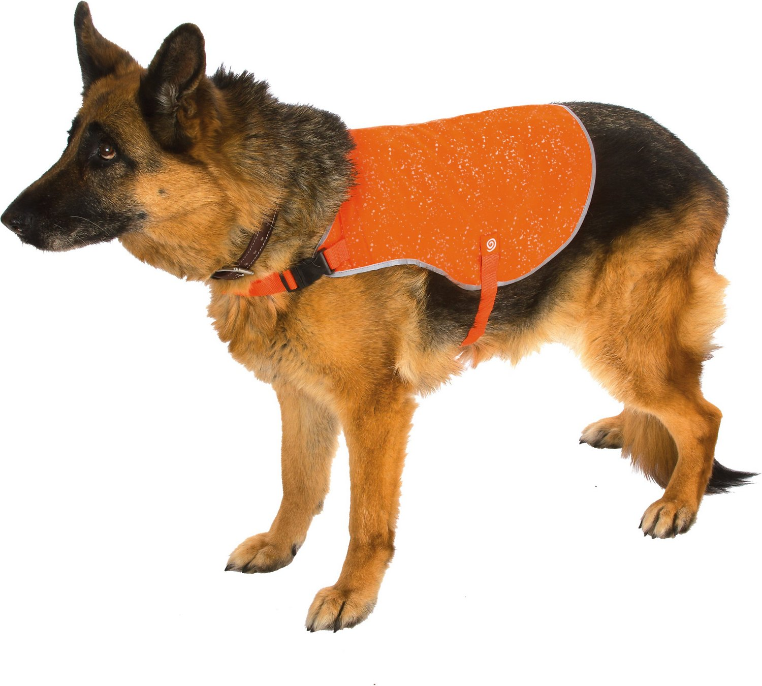 9f0e391d45d34 Ultra Paws Ultra-Reflective Safety Dog Vest, Small, Orange - Chewy.com