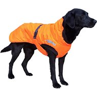 Hurrta Summit Dog Parka, 12-in, Orange