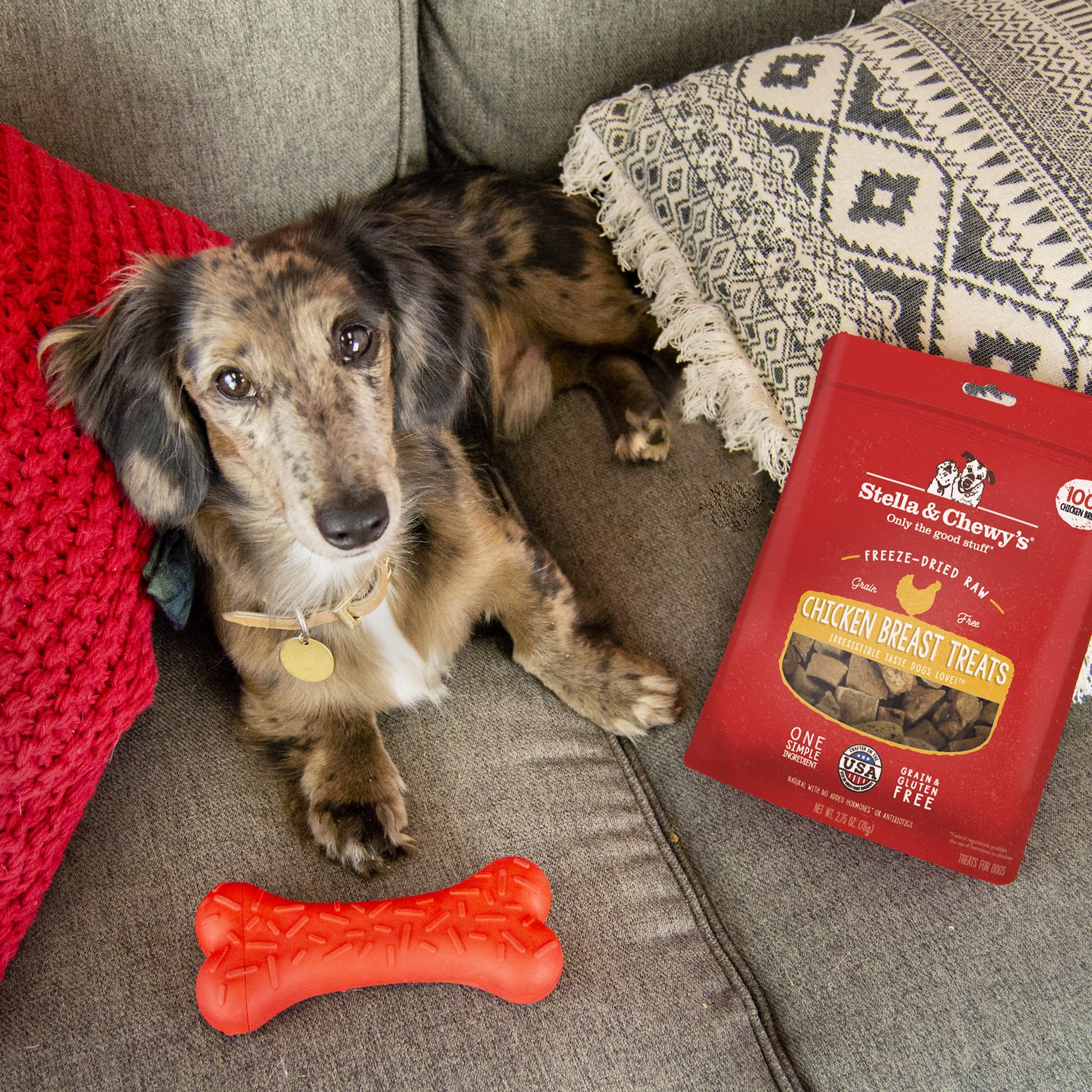 Stella & Chewy's Chicken Breast Freeze-Dried Raw Dog