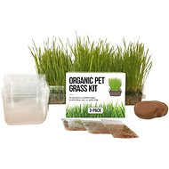 The Cat Ladies Organic Pet Grass Growing Kit With Containers, 3 count