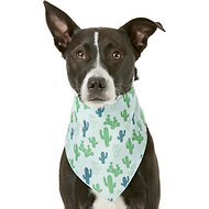 Pup Crew Catcus Print Dog & Cat Bandana, Medium/Large