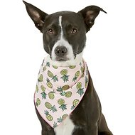 Pup Crew Pineapple Print Dog & Cat Bandana, Medium/Large