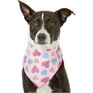 Pup Crew Heart Print Dog & Cat Bandana, Medium/Large
