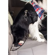Leashboss Heavy Duty No-Chew Dog Car Restraint Seatbelt, 26-in