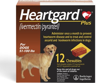 HEARTGARD Plus Soft Chew for Dogs, 51-100 lbs, (Brown Box), 12 Soft Chews  (12-mos. supply) - Chewy.com