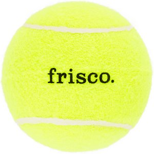 Frisco Fetch Squeaking Tennis Ball Dog Toy