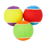 Frisco Fetch Squeaking Colorful Tennis Ball Dog Toy, Medium, 3-pack