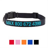 GoTags Personalized Nylon Dog Collar, Black, Large