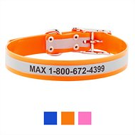GoTags Personalized Reflective Waterproof Dog Collar, Orange, 18 - 21 in