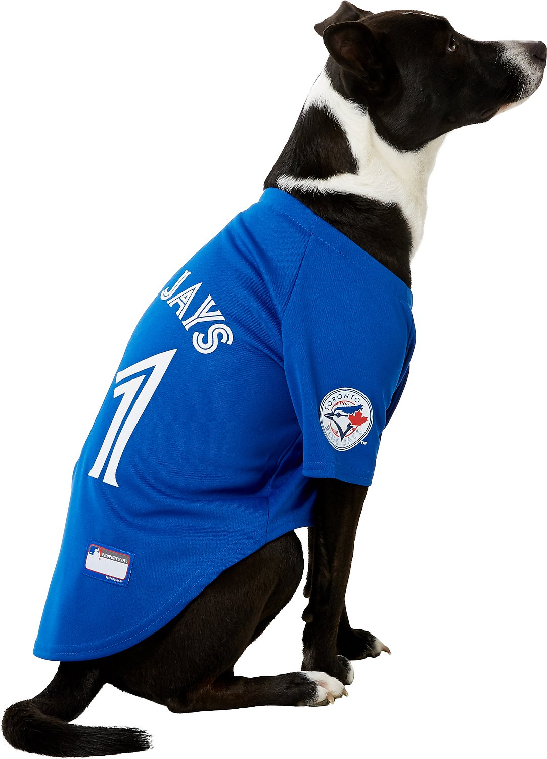 best sneakers ed52b bfc61 Pets First Toronto Blue Jays Dog & Cat Jersey, Large