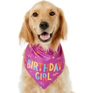 Frisco Birthday Girl Dog & Cat Bandana, One Size