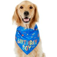 Frisco Birthday Boy Dog & Cat Bandana, One Size