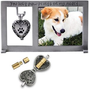 Cathedral Art Pet Memorial Frame with Ashes Locket