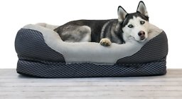 60964606cd84 BarksBar Snuggly Sleeper Orthopedic Dog Bed, Gray, Large - Chewy.com