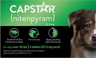 Capstar Flea Tablets For Dogs 26 125 Lbs 6 Count Chewycom