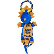 Charming Pets Ropes-A-Go-GoDog Toy, Dragon