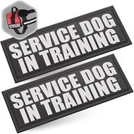 Industrial Puppy Service Dog In Training Patches, Large, 2 count