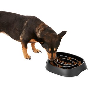Frisco Non-Skid Slow Feeder Dog Bowl
