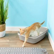 Frisco Sifting Cat Litter Box, Large, 22-in