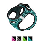 Best Pet Supplies Voyager All Season Mesh Dog Harness, Turquoise, Medium