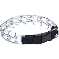 Titan Martingale Prong Training Dog Collar, 18-in