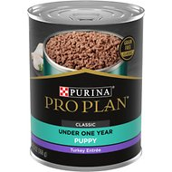 Purina Pro Plan Focus Puppy Classic Turkey Entree Grain-Free Canned Dog Food, 13-oz, case of 12