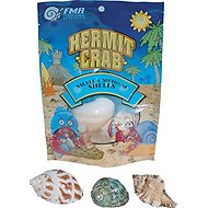 Florida Marine Research Natural Hermit Crab Shells