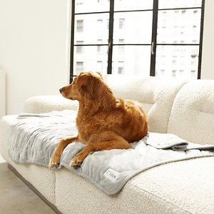 PetFusion Microplush Quilted Dog & Cat Blanket