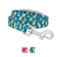 Frisco Patterned Neoprene Dog Leash, Pineapple, Large: 6-ft long, 3/4-in wide
