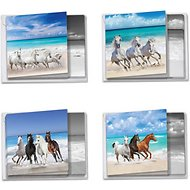 The Best Card Company Horse Assorted Blank Greeting Cards, 12-count