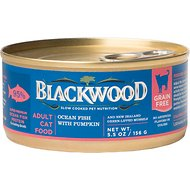 Blackwood Ocean Fish & Pumpkin Grain-Free Adult Canned Cat Food, 5.5-oz, case of 24