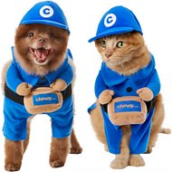 Frisco Chewy Box Delivery Driver Walking Dog & Cat Costume, Medium