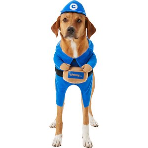 Chewy Box Delivery Driver Walking Dog Costume