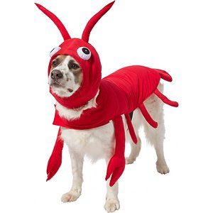 Frisco Red Lobster Dog & Cat Costume, XX-Large