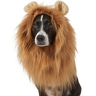 Frisco Lion Mane Dog & Cat Costume